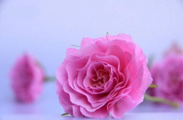 Como fazer flores de papel crepom 02