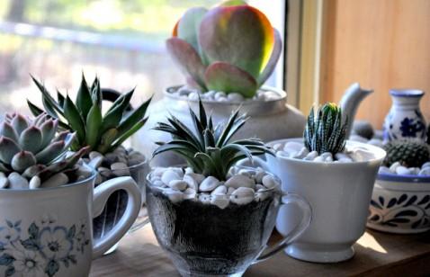 Vasos artesanais para seu jardim 12