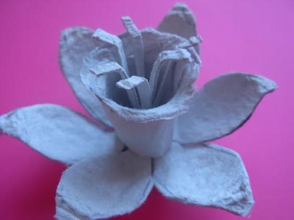 Flores de caixa de ovos 013