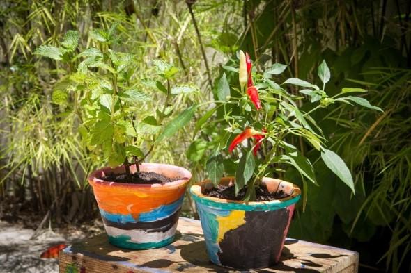 Dicas de artesanato para seu jardim 001