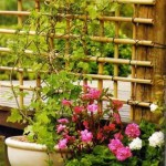 Treliças para enfeitar o jardim e a casa