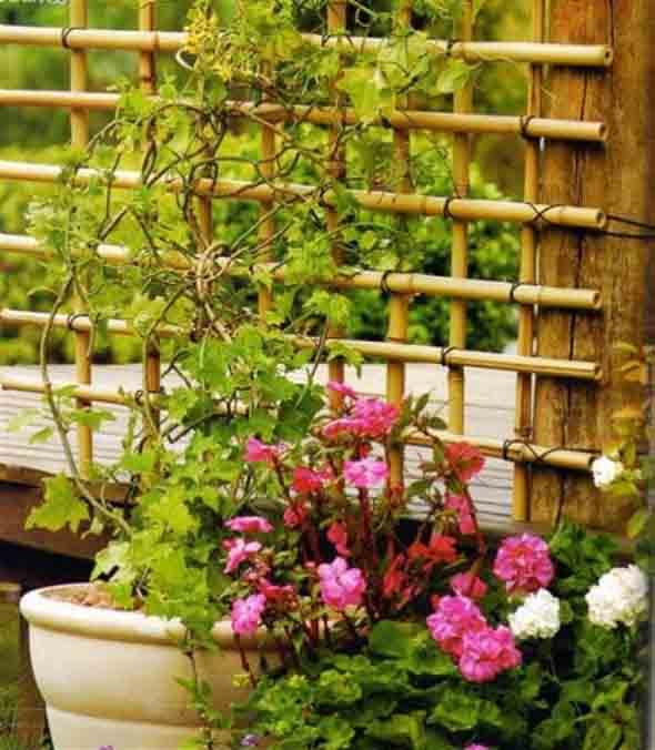 artesanato de bambu para jardim:Treliças para enfeitar o jardim e a casa