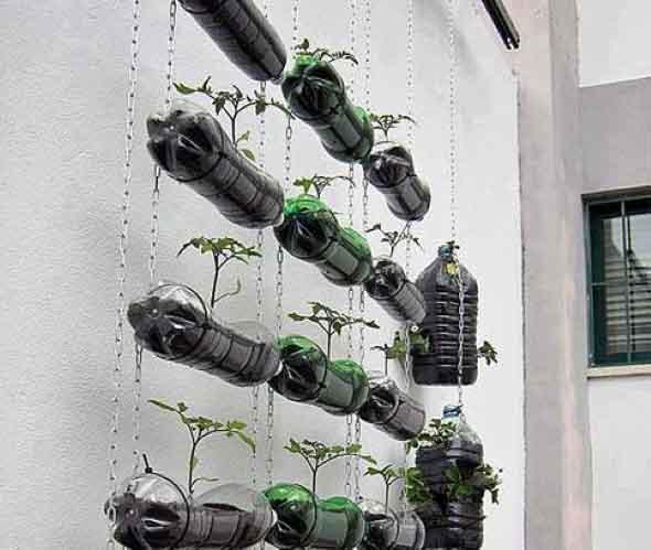 jardim vertical de garrafa pet passo a passo: passo a passo para montagem de um jardim vertical artesanal com o uso