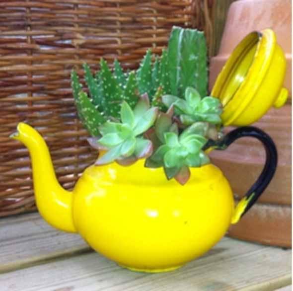 Transforme bules antigos em vasos charmosos 014