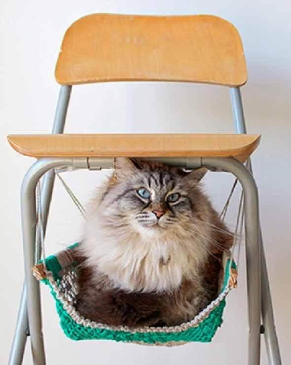 Aprenda a fazer uma cama artesanal para seu gatinho 013