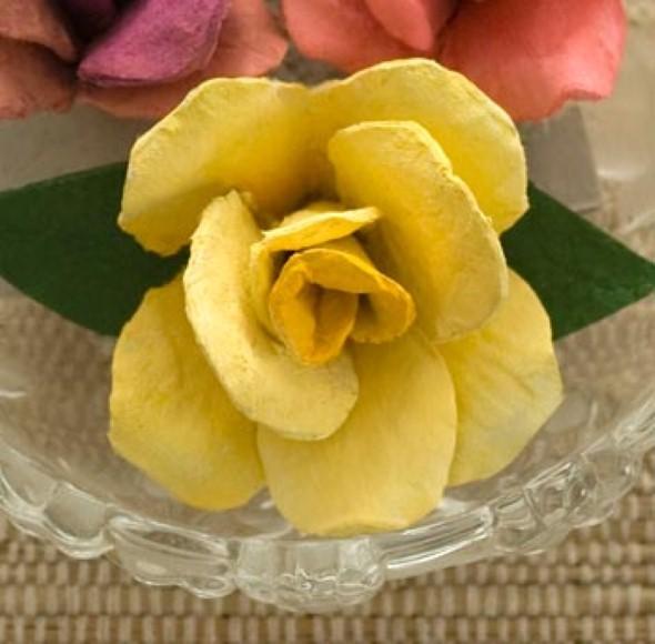Flores de caixa de ovos 002
