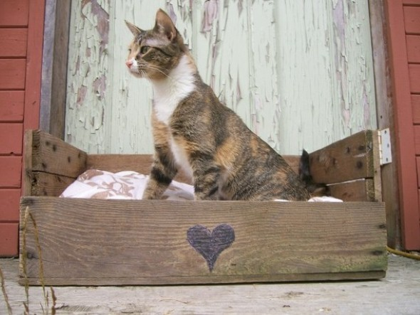 Cama artesanal para animais de estimação 003