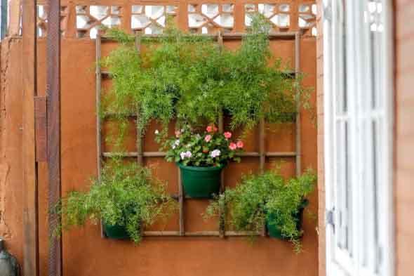 Treliças para enfeitar o jardim 013
