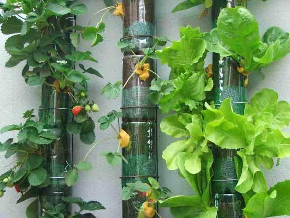 Jardim vertical artesanal 014