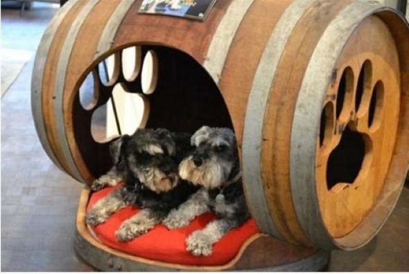 Aprenda a fazer uma cama artesanal para seu cachorrinho 013