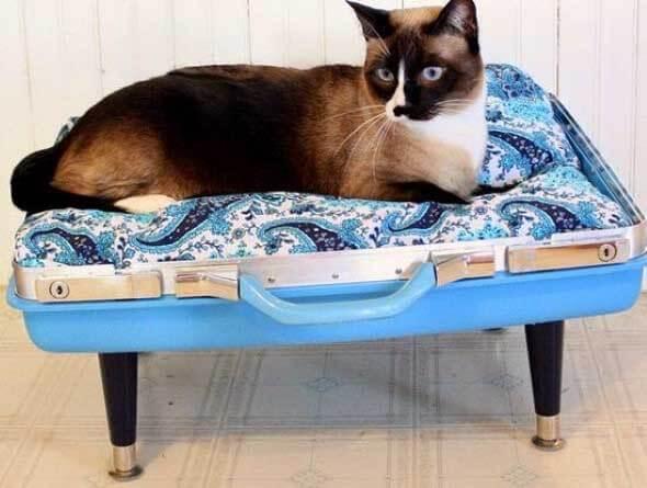 Aprenda a fazer uma cama artesanal para seu gatinho 002