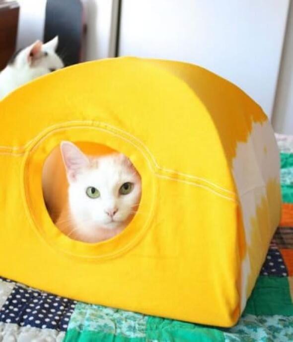 Aprenda a fazer uma cama artesanal para seu gatinho 011