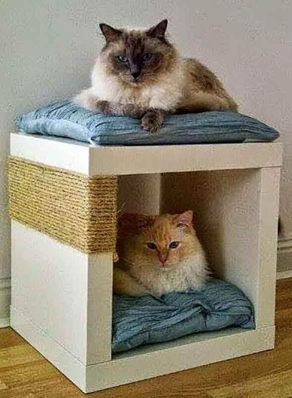 Aprenda a fazer uma cama artesanal para seu gatinho 015