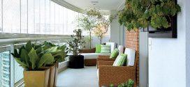 Tipos de plantas para varandas de apartamento