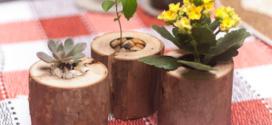 Vasos feitos de pedaços de troncos