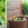 DIY: Monte uma fonte de água decorativa